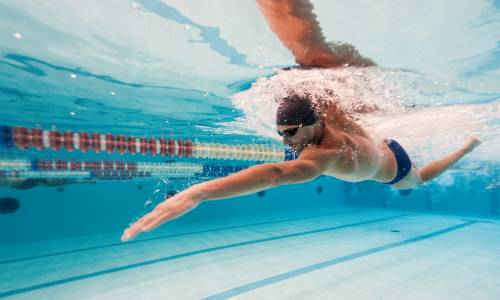 Book now for interactive swim session with Coach Paul Webb